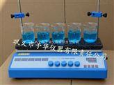 智能恒温多点磁力搅拌器ZNCL-S型
