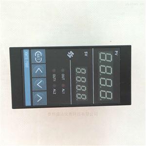 E分度号智能数显温度调节仪