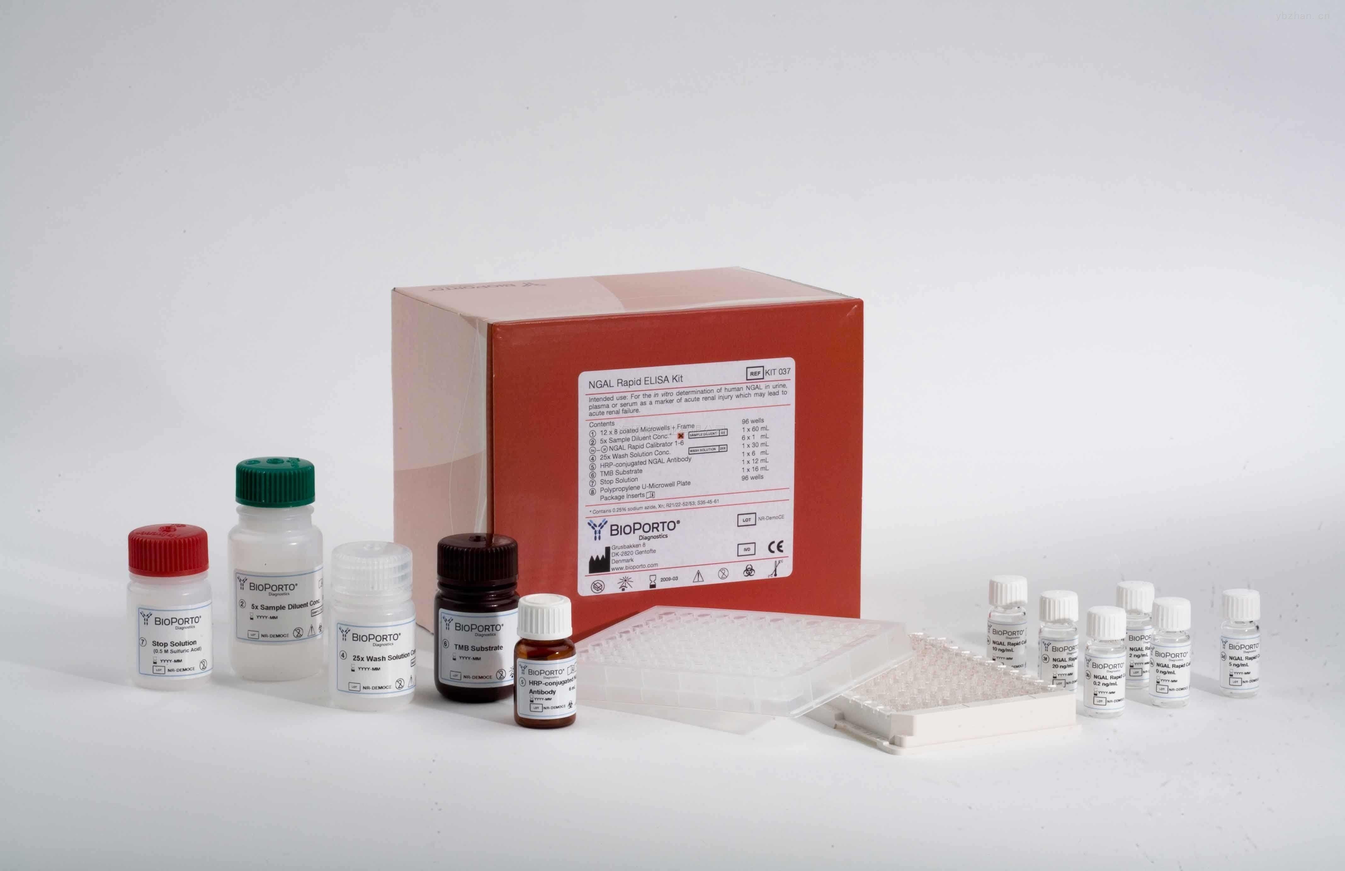 冰凍切片組織APC蛋白表達NBT顯色光學顯微鏡檢測試劑盒