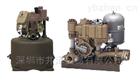 IWAYADENKI巖谷電機水泵井澤貿易PT6110L