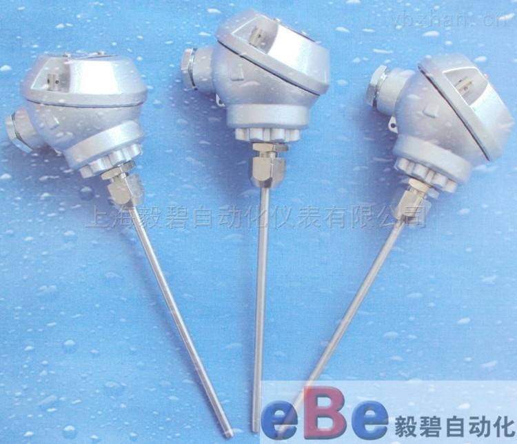 WRMK2-131/WRNK2-131/WREK2-131/WRCK2-131双支铠装热电偶