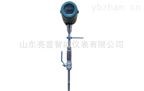 插入式顯示型熱式氣體質量流量計