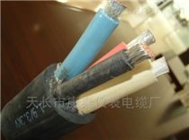 H07RN-F 3G1.0德标电缆