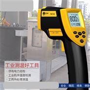 TM600铁水测温仪