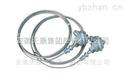 WZPK-230天康铠装热电阻