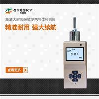 泵吸式氢气泄露检测仪