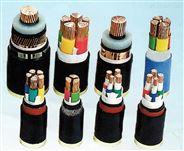 YJV銅芯交聯電力電纜2×50