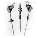 WZPK系列安徽天康轴瓦电阻