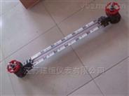 防腐高温低压型磁性液位计