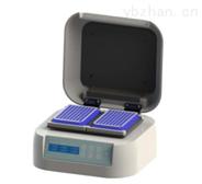 数显酶标板孵育振荡器