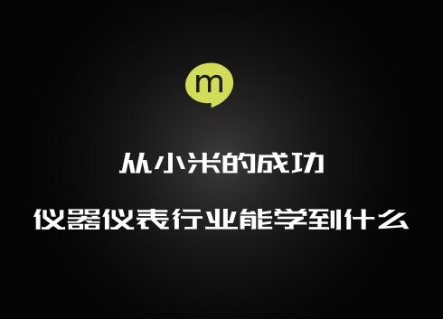 小米发展启示:仪器仪表企业发展要注意什么(上)