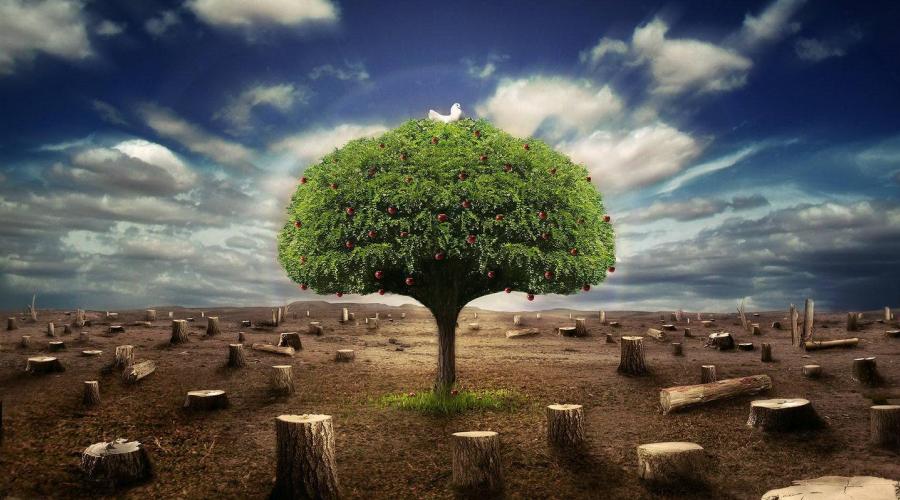 生态环境监测检查三年计划启动 推动监测行业升级