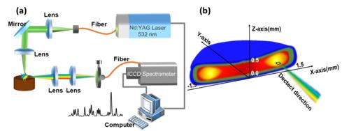 光纤传能激光诱导等离子体光谱检测研究获新进
