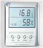 BTWS-2精密温湿度计